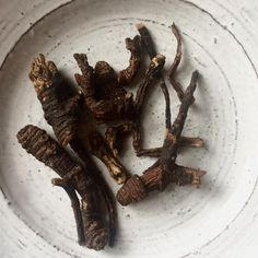 The Benefits of Osha Root & How To Prepare Your Own Recipe