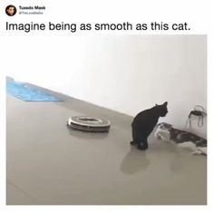16 Jokes of the day for Saturday 08 September - Jokes - Funny memes - - 16 Jokes of the day for Saturday 08 September 2018 Cute Jokes, Funny Cute, Funny Jokes, Funny Gifs, Funny Texts, Animals And Pets, Funny Animals, Cute Animals, Funny Animal Pictures