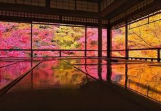 """The upcoming season should """"Laub"""" meet the best time. Speaking of foliage, color … - Do Garden Places Around The World, Around The Worlds, Beautiful World, Beautiful Places, Japanese Landscape, Kyoto Japan, Dojo, The Real World, Great View"""