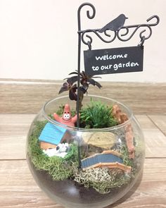Rebellion! 💪🏻 Starfish #patrick lives now in his own garden. Sorry #spongebob! #welcome to #ourgarden  #terrariumart #terrariumlove #terrariumdesign #nofilterneeded #terrariumlover #succulents #simpledesigns #simpleideas #simple #officedesign #officeterrarium #oldhouse #cute #simpleoffice #creativeblumen #creativeandsimpledesign #teraryum #teraryumtasarım #teraryumbutik #teraryum_tr #teraryumaşkı #teraryumhediye #teraryumdizayn #teraryumgarden #teraryumlove