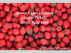Rose Hips, Order now, FREE shipping. in New York NY - Free New York SuperAds
