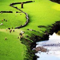 Las 30 fotos que harán que pierdas la cabeza por Galicia. Galería muy recomendable :)