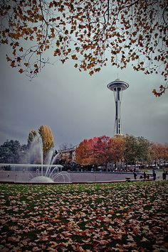 I love the International Fountain at the Seattle Center. It's one of my favorite things there. So I knew I wanted to get a shot of it in Autumn. Having the Space Needle in the background was just a bonus. San Diego, San Francisco, Seattle Washington, Washington State, San Antonio, Hello Seattle, Nova Orleans, Seattle Photography, Nashville
