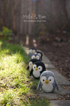 Penguins :) Dedicated to my wonderful man! His favourite Animals ever. Penguin World, Penguin Day, Felt Penguin, Penguin Love, Penguins And Polar Bears, Cute Penguins, Felt Animals, Cute Animals, Penguin Pictures