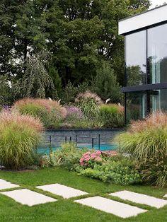 Gräser im Herbst - moderner Präriegarten