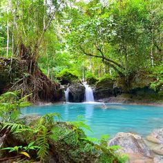 Kawasan Falls is located in Badian, Cebu, Phillipines. It is a relaxing place full of waterfalls of spring water. It consists of 3 main cascading waterfalls. . . It is considered the pearl of the Philippines. The water is turquoise and the area is full of