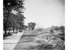 Looking north toward Silsbee's Lincoln Park observatory, probably 1900-1910.