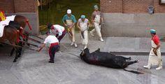 Empleados trasladan a un toro muerto tras una corrida en Madrid (AP).