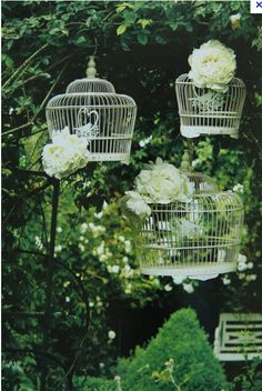 flower birdcages