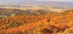 http://fineartamerica.com/featured/shenandoah-valley-in-autumn-dan-sproul.html