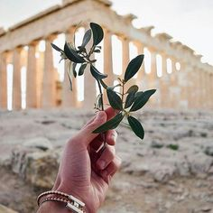 ATHENS. Visit the impressive temple ofPARTHENON. #parthenon, i#athens! By @andreasalimp