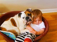 Two of my favorite things: Babies and bulldogs!