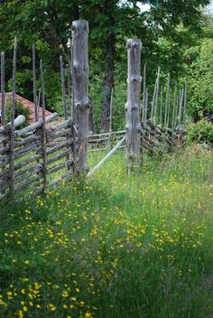 Sommar i Dalarna. #swedish #nature #swedishsummer #flowers Country Farm, Country Life, Scandinavian Cabin, Kingdom Of Sweden, Swedish Cottage, In The Pale Moonlight, Sweden House, Sweden Travel, Back Road