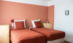 The Socialite Family Bedroom Paint Colors, Wall Colors, Terracotta, Socialite Family, Guest Room, Color Blocking, Restaurant, Room Decor, Souffle