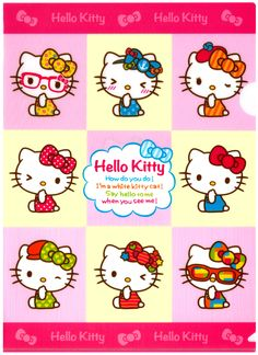 Sanrio Hello Kitty Fashion Plastic File Folder