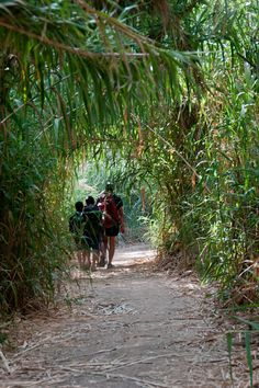 The Israel Trail - a walk to Tel Aviv