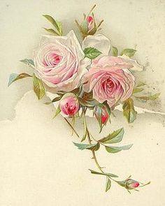 Коллекция картинок: Розовое настроение, ч. 4