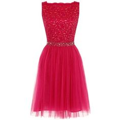 Dorothy Perkins **Laced in Love Pink fit and flare Dress