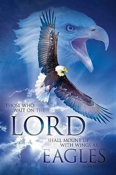 Isaiah 40:31 (NKJV) - But those who wait on the LORD Shall renew their strength; They shall mount up with wings like eagles, They shall run and not be weary, They shall walk and not faint.