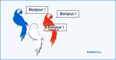 "My motto is ""repetition is the key"". Yet one could argue what's the use of repetition in French if you are repeating things like a parrot? Join the discussion on French Today's blog"