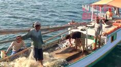 Sad news from the southern Java Sea