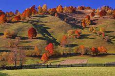 Gyimesbükk Tarhavas   István Fodor ---- #boostingromania #promovezromania #ig_romania #transylvania #romaniamagica #szeklerland #ig_europe #autumn #vacation #explore #travel #discover #nature #passionpassport #bbctravel #visualsoflife Z Ro, Tourist Info, Explore Travel, Exploring, Natural Beauty, Europe, Autumn, Vacation, Instagram Posts