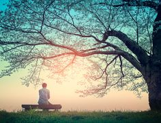 Technology is impairing our ability to be alone, research shows. Here's how to reap the benefits of solitude. Solitude has been crucial to the creativity and mental health of great thinkers throughout history. Failed Relationship, Serious Relationship, Relationships, Sri Prem Baba, People Who Lie, Victim Mentality, Reap The Benefits, Great Thinkers, Paz Interior