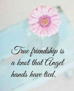 True Friendship Is A Knot That Angel Hands Have Tied friend friendship quotes friend quotes quotes for friends quotes on friendship Birthday Message For Friend Friendship, Happy Birthday Best Friend, Cute Happy Birthday, Sister Birthday Quotes, Sister Quotes, Bff Quotes, Birthday Messages, Birthday Greetings, Qoutes