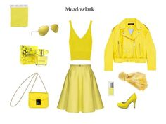 Meadowlark in the fast fashion stores. Top, jacket: Zara, skirt: Orsay, shoes: Tamaris, bag: New Yorker