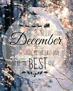 • G❄❄DMORNING DECEMBER • It's time for #christmas #songs , hot #chocolate with cream and #christmastrees ☕ #goodmorning #december #new #month #decembertoremember #goals #chances #dreamy #dreambody #true #love #almost #christmastime #be #beautiful #day #winter #wow #quotes #quoteoftheday #fitness #fitdutchies #followme #instagram #insta