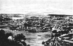Historic black & white illustration of Launceston, Tasmania, from Bird People, Black And White Illustration, Historical Pictures, Tasmania, Continents, Landscape Architecture, Family History, Vintage Photos, Wild Flowers