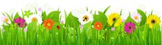 Grass with Flowers and Bee PNG Clipart