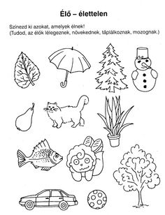 Ovisélet : Nyomtatható feladatlapok Kindergarten Projects, Kindergarten Worksheets, Educational Activities, Preschool Activities, Diy For Kids, Crafts For Kids, Cicely Mary Barker, Tracing Worksheets, Exercise For Kids