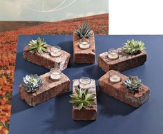 Brick Succulent Planters by readymade These would be so cute to make. Easy project for kids at church to do. Small container that fits in one side of the brick to hold the succulent plant. Succulent Planter Diy, Diy Planters, Succulents Garden, Planter Ideas, Succulent Centerpieces, Wedding Centerpieces, Hanging Planters, Summer Centerpieces, Succulent Ideas