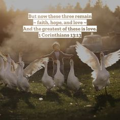 1 Corinthians But now these three remain— faith, hope, and love. And the greatest of these is love. Dave Willis, Respect Girls, Thankful Heart, All Things New, Finding God, Love Is Patient, Better Love, Love And Marriage, Envy