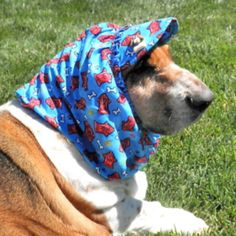 Handmade Dog Snoods, Visors, Hats and Gifts Snood Pattern, Pet Sweaters, Bassett Hound, Love Your Pet, Dog Things, Dog Crafts, Visors, New Puppy, Goodie Bags