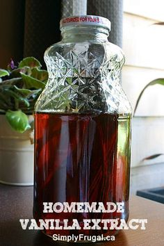 A Homemade Christmas Gift: Homemade Vanilla Extract!  Make this now so it ready to give as gifts for Christmas!