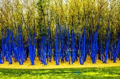 The Blue Trees at Allen Parkway and Waugh, Houston, Texas