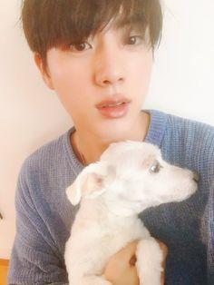 JIN'S DOG
