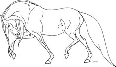 Horse Coloring Pages Books Drawings Animal Art Camp Crafts Paintings Line