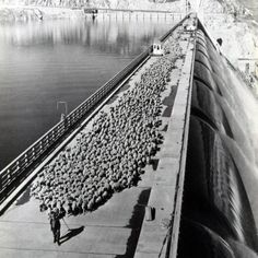 Joe Hodgin, an eastern Washington woolgrower, takes his herd of 2,600 sheep across the Grand Coulee Dam around 1947.