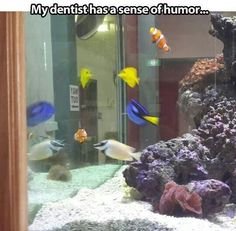 Nemo... Neeeeeeeemo! (oh, and Dory too). This dentist has quite a sense of humor!