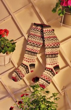 Ravelry: KristaKe's Polvarit Knit Socks, Knitting Socks, Hand Knitting, Knitting Patterns, Colorful Socks, Yarn Shop, Crochet, Mittens, Ravelry