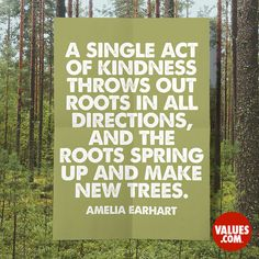 """A single act of kindness throws out roots in all directions, and the roots spring up and make new trees."" - Amelia Earhart"
