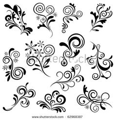 Floral element set. Illustration vector.