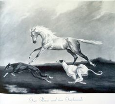 Grey horse and two greyhounds.  The greyhounds will outrun the horse...