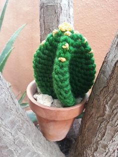 Tutorial de crochet/ganchillo, cactus facil de hacer.