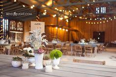 Don Strange Ranch Wedding 34-kendall-creek-barn-wedding-reception-don-strange-ranch-barn-photos-boerne