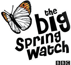 Big Spring Watch