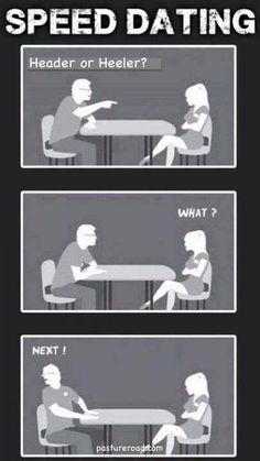 speed dating- team roping